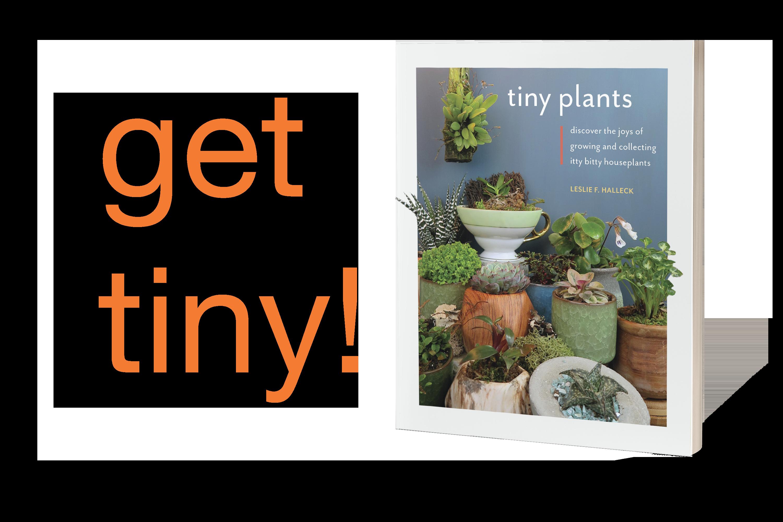 Tiny Plants Get Tiny